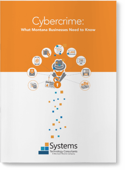 MM Systems CYBER GUIDES